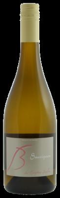 sophie-bertin-sauvignon-blanc
